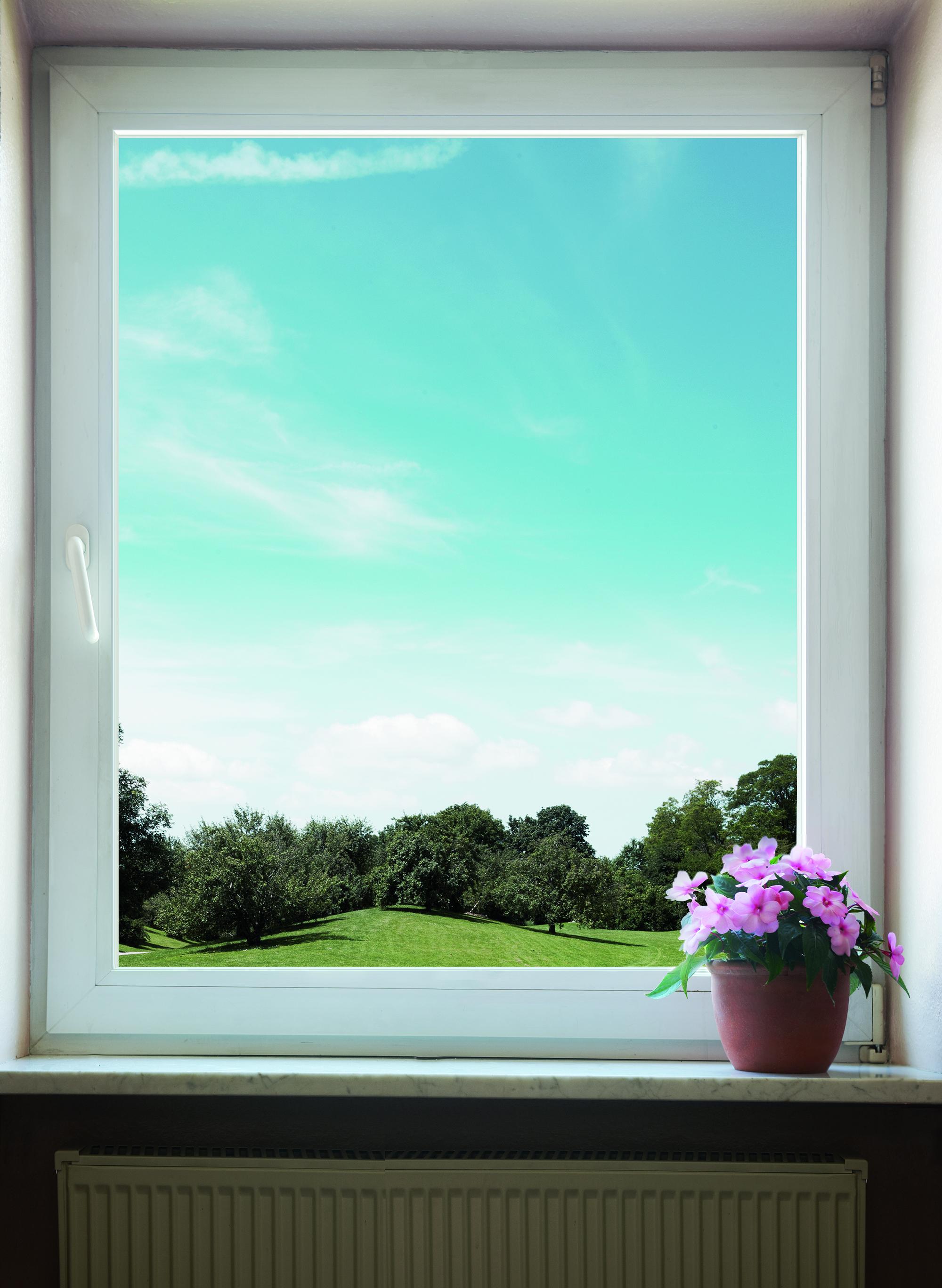 Blick aus dem Fenster ins Grüne.