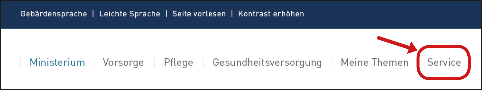 Haupt-Menü Service.
