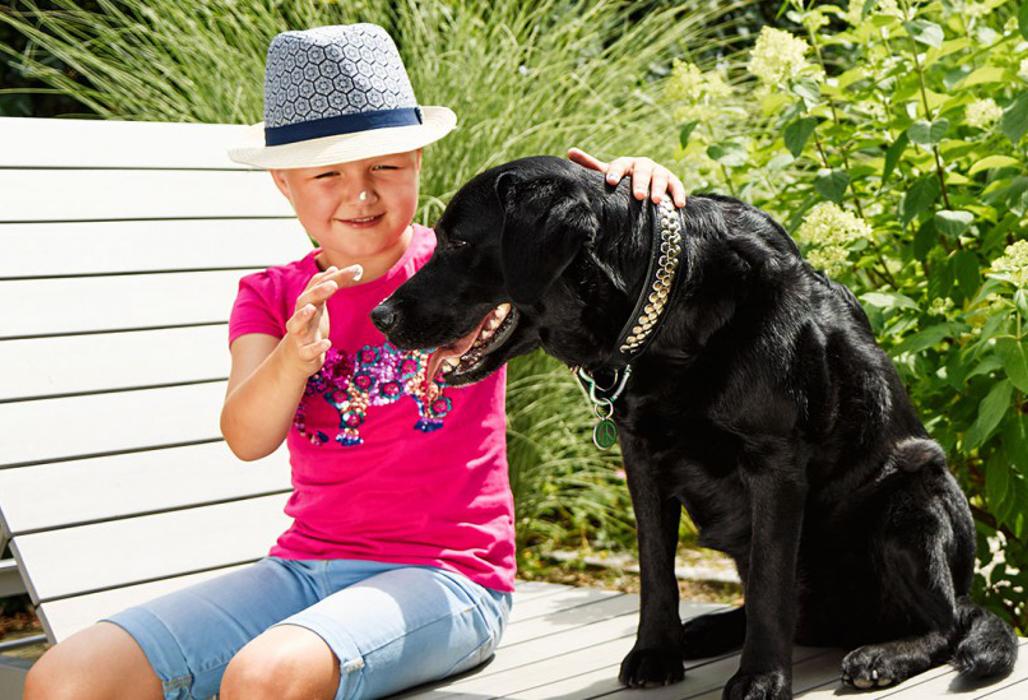 Sonne(n) mit Verstand - Kind schmiert seinem Hund Sonnencreme auf die Nase