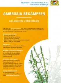 Publikation Ambrosia bekämpfen - Allergien vorbeugen (Poster)