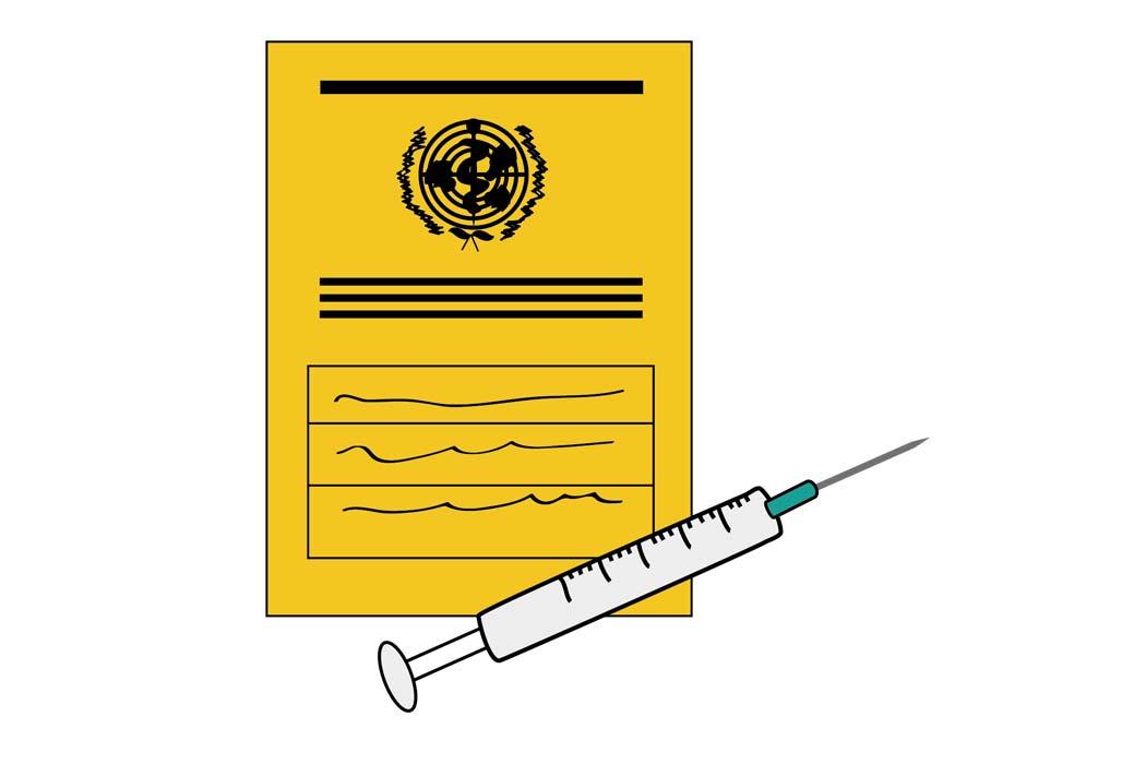Impfbuch und Spitze - Schutzimpfung gegen Masern