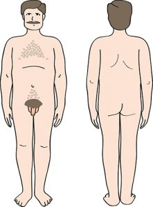 Ein Mann, der von vorne und hinten nackt gezeigt wird